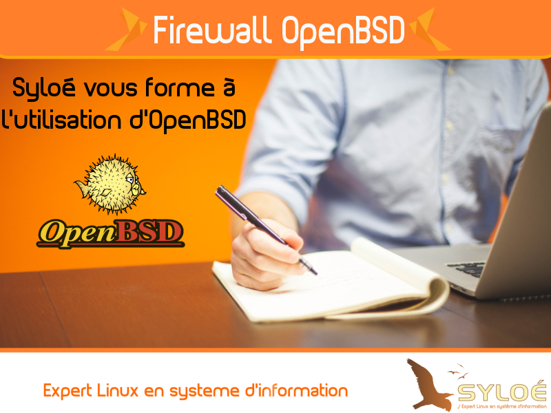 Formation-openbsd-linux